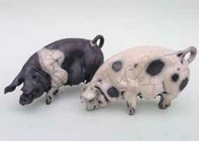 Christine Cummings very-small-pigs-C0002