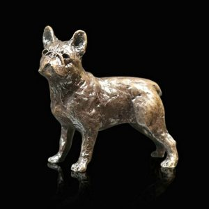 butler & peach minature bronze french bulldog standing looking up