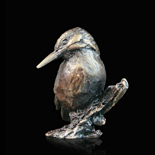 butler & peach minature bronze tubby kingfisher sitting on a branch with its head turned