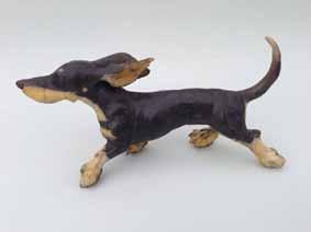 christine cummings running dachshund