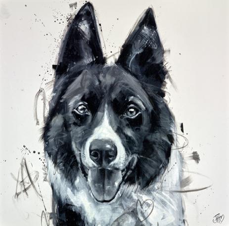 PLayful Collie By Jennifer Hogwood
